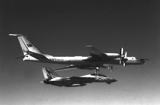F-14A_VF-111_intercepting_Indian_Tu-142MK-E.JPEG - Copy